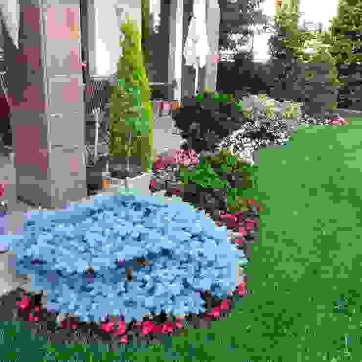 Moderner Garten von abelia peyzaj Modern