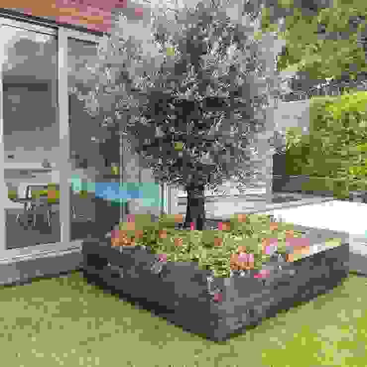Modern garden by abelia peyzaj Modern