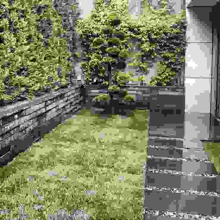 abelia peyzaj – çubukluvadi:  tarz Bahçe