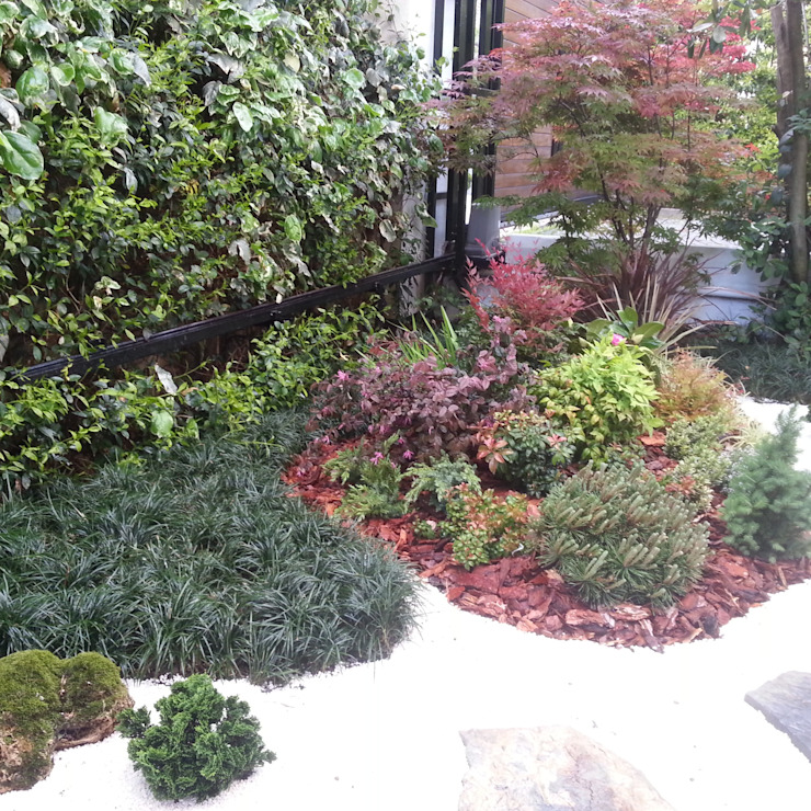 etiler Modern Bahçe abelia peyzaj Modern