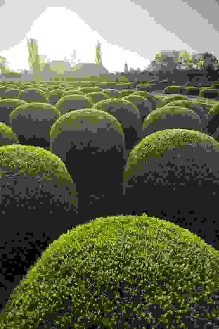 Jardins minimalistas por Solitair Minimalista