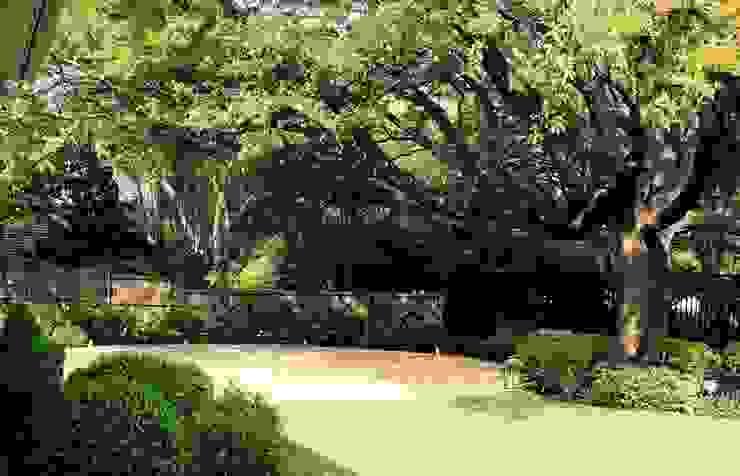 Detalle de jardín en Dallas, Texas, U.S.A Jardines de estilo ecléctico de a.s.paisajimo Ecléctico