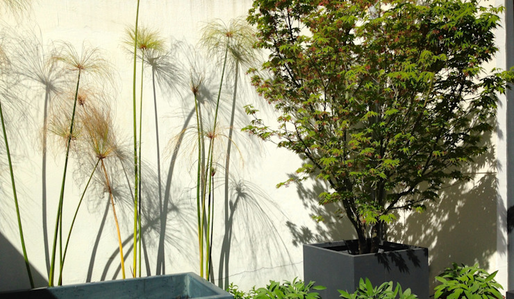 Eclectic style garden by a.s.paisajimo Eclectic