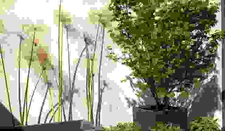 Detalle de patio Jardines de estilo ecléctico de a.s.paisajimo Ecléctico