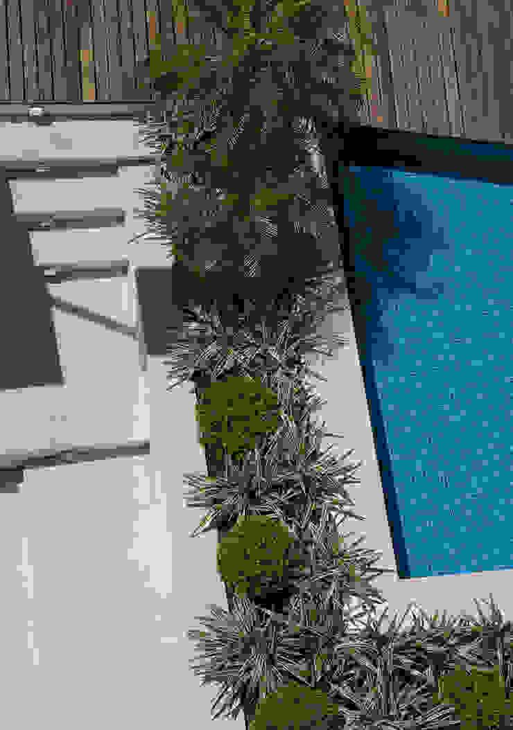 Moderne zwembaden van Tellini Vontobel Arquitetura Modern