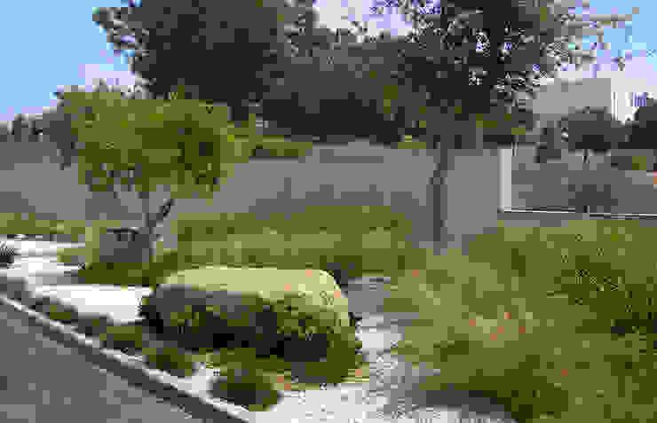 Estudio de paisajismo 2R PAISAJE Taman Gaya Mediteran