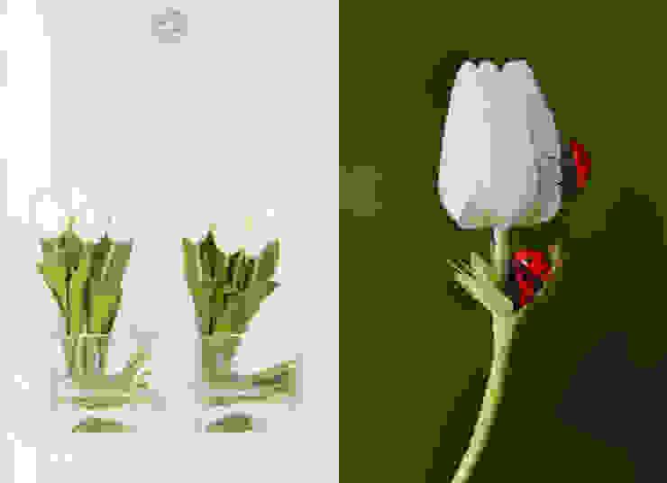 White Tulips arrangement Materflora Lda. HouseholdPlants & accessories