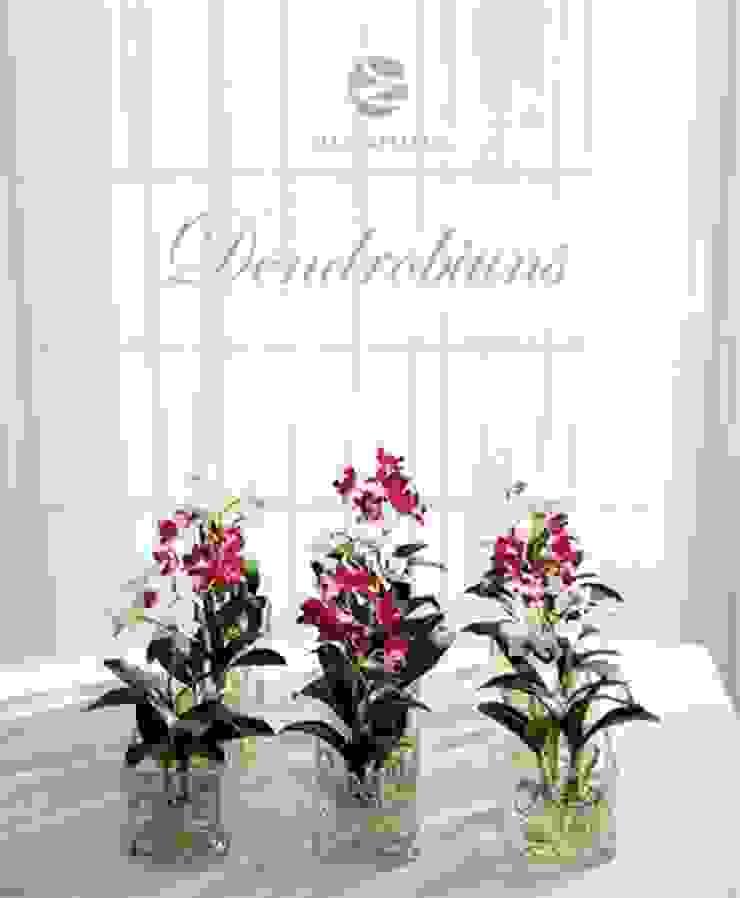 Dendrobium Orchids arrangement Materflora Lda. HouseholdPlants & accessories