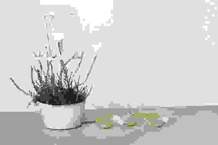 Green lamp: styl , w kategorii  zaprojektowany przez SIESTA ,Minimalistyczny