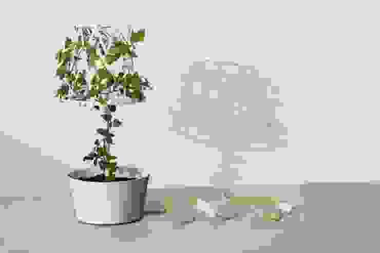 Green lamp: styl , w kategorii Zieleń wewnątrz zaprojektowany przez SIESTA ,