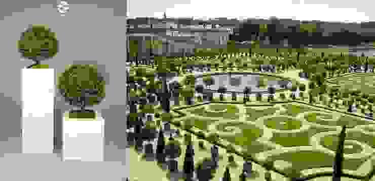 Versailles Style! Materflora Lda. HouseholdPlants & accessories