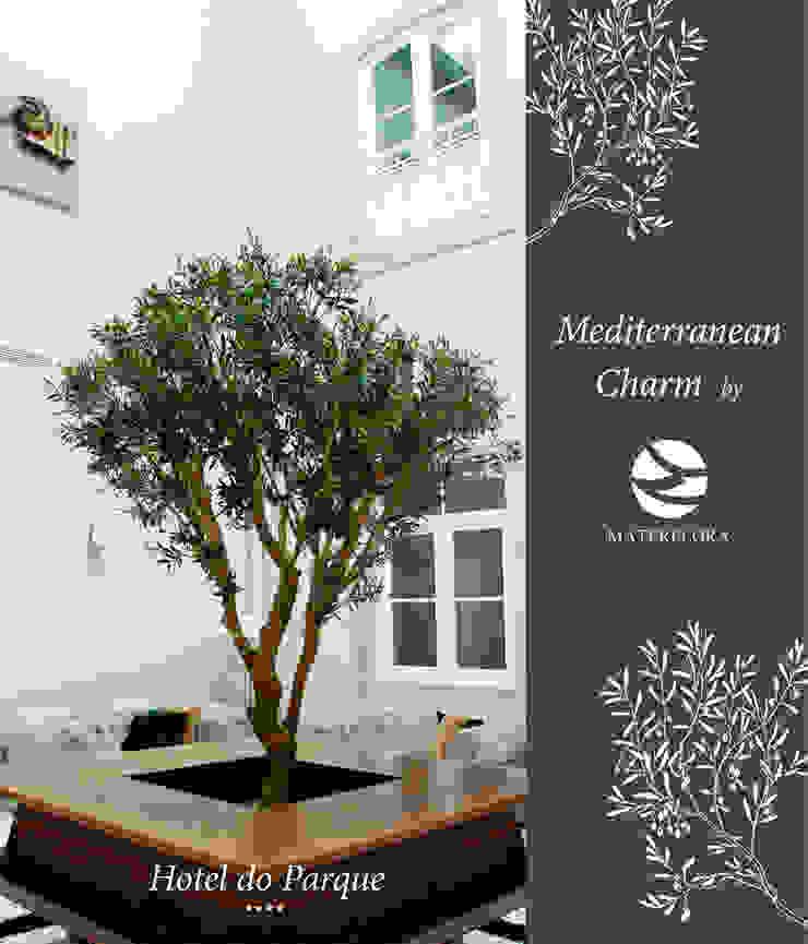 Mediterranean Charm Materflora Lda. Hotels