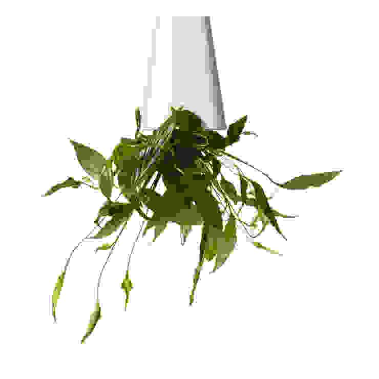 Sky Planter reciclada mediana blanca de Gnomo Minimalista
