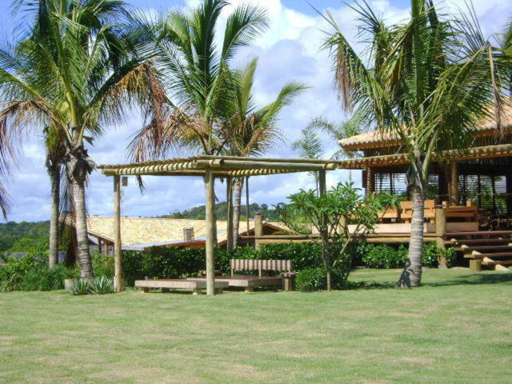 Jardines de estilo tropical de Línea Paisagismo.Claudia Muñoz Tropical