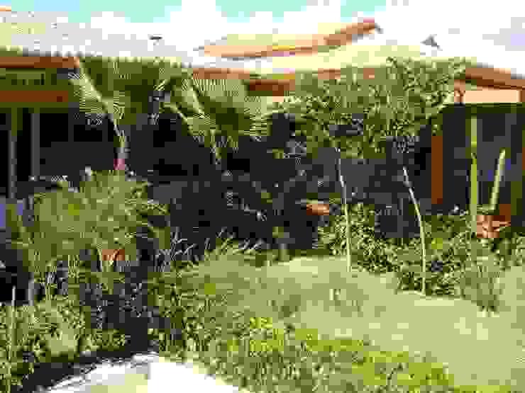 Taman Tropis Oleh Línea Paisagismo.Claudia Muñoz Tropis