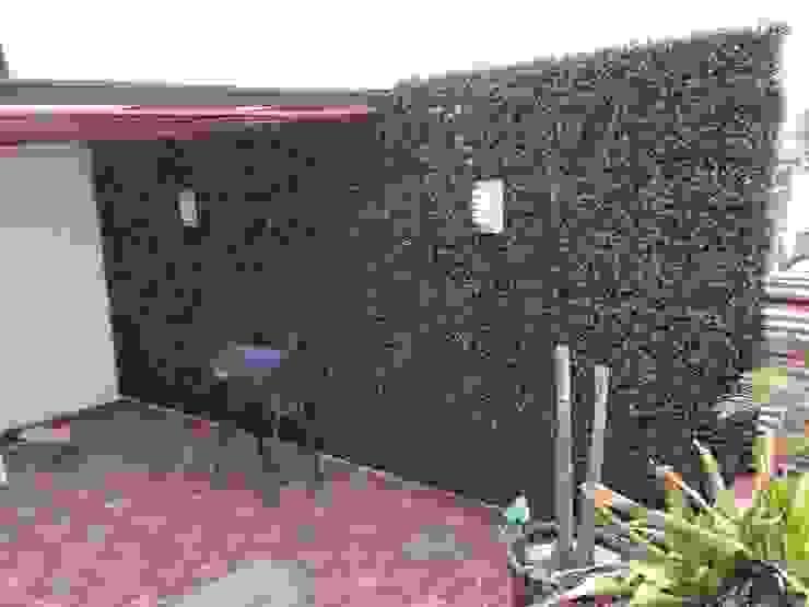 terraza Casas tropicales de Armatoste studio Tropical
