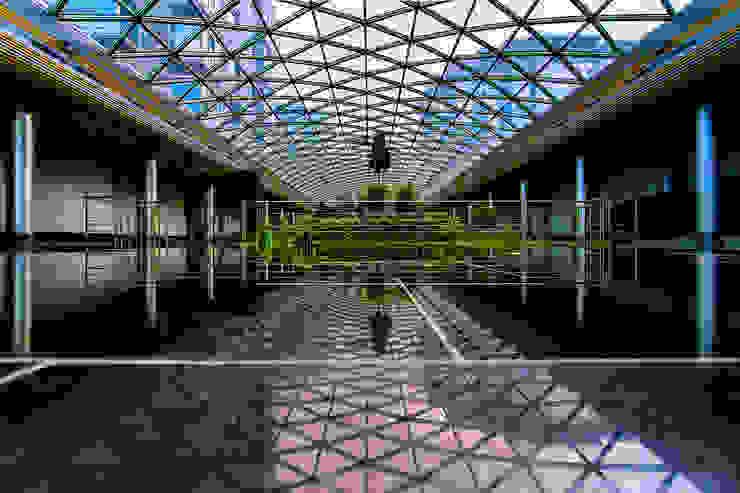 Diadema Club House Зимний сад в классическом стиле от Belimov-Gushchin Andrey Классический