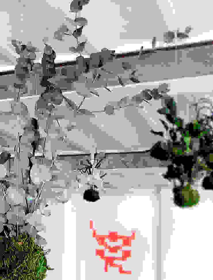 Adventive Interior landscaping Green