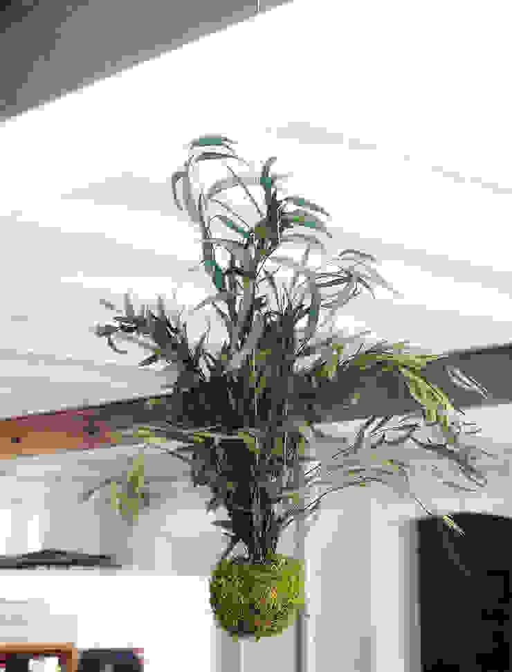 Adventive Interior landscaping