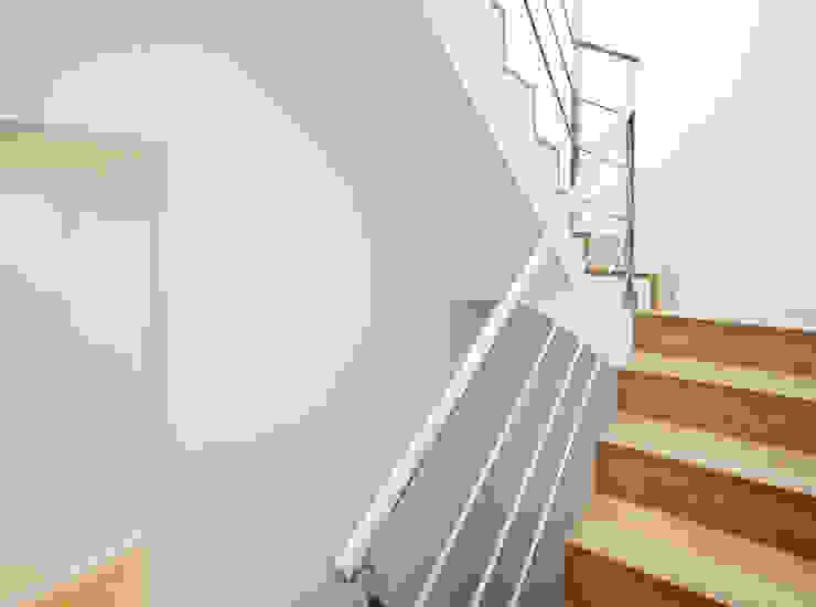 Escalera con boveda catalana, madera y acero inoxidable Pasillos, vestíbulos y escaleras de estilo mediterráneo de GPA Gestión de Proyectos Arquitectónicos ]gpa[® Mediterráneo