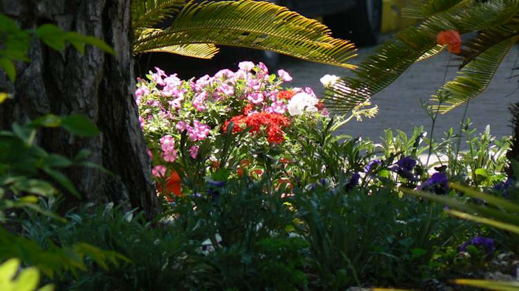 Jardines de estilo tropical de sihirlipeyzaj Tropical