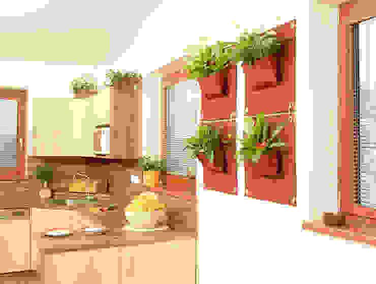 İç Mekan ve Dış Mekan Yeni Nesil Dikey Bahçeler Butik Bahçe Dikey Bahçe ve Peyzaj Tasarımları BahçeBitki & Çiçekler