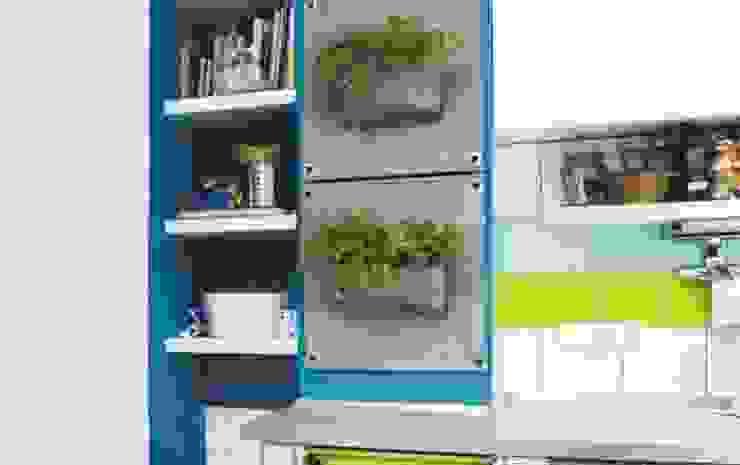 Butik Bahçe ile Yeşili Duvarlarınıza Taşıyın..! Minimalist Balkon, Veranda & Teras Butik Bahçe Dikey Bahçe ve Peyzaj Tasarımları Minimalist