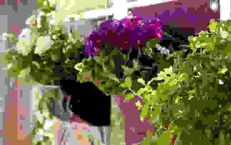 İç Dekorasyon Bitki Seçimi Butik Bahçe Dikey Bahçe ve Peyzaj Tasarımları Asyatik