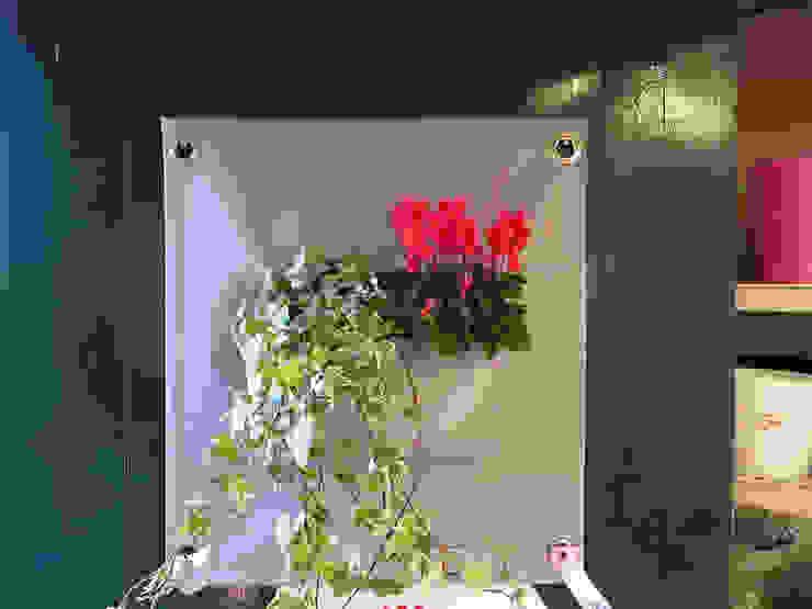 Butik Bahçe Dikey Bahçe ve Peyzaj Tasarımları ระเบียง นอกชานต้นไม้ ดอกไม้