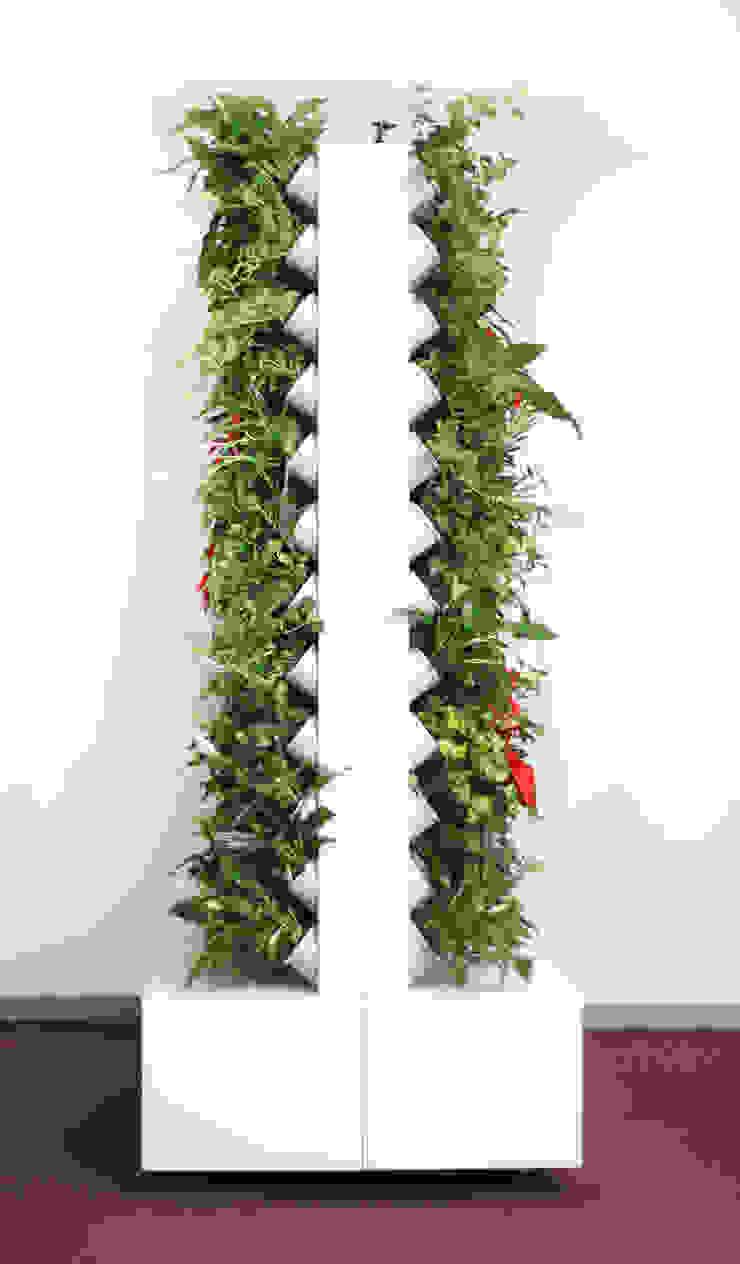 Wertykalne ściany kwiatowe Pixel garden od Pixel Garden Nowoczesny