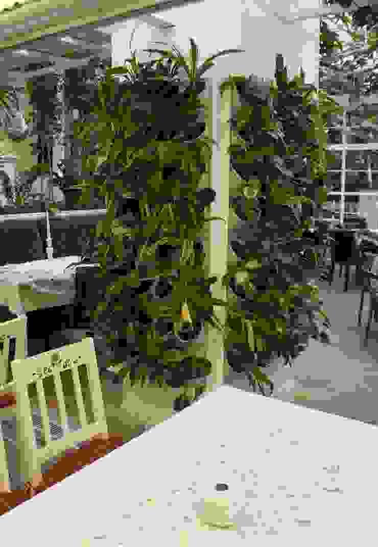 Zielona ściana – prosty montaż, fantastyczny efekt! Nowoczesny ogród od Pixel Garden Nowoczesny