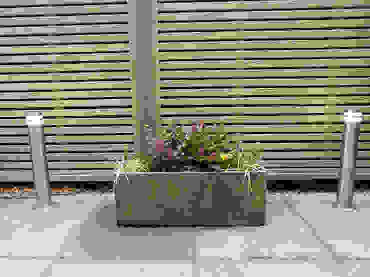 de estilo  por Anne Macfie Garden Design, Moderno