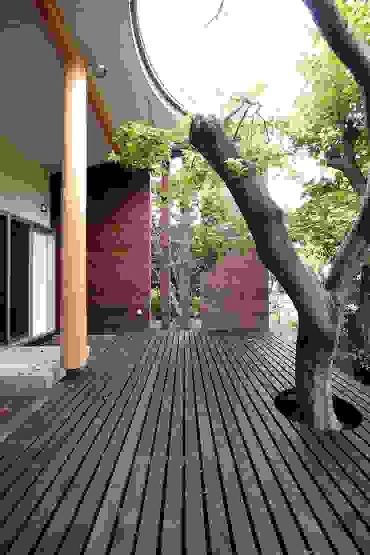 ウッドデッキと既存樹木 モダンな庭 の 前田敦計画工房 モダン