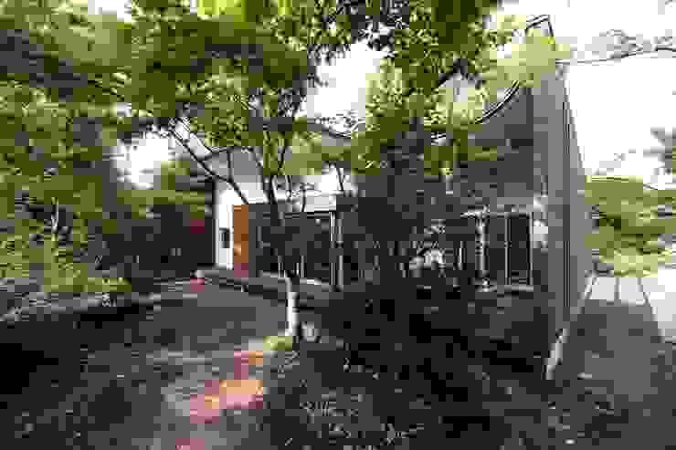 木立の樹木を屋根の一部として活用 モダンな 家 の 前田敦計画工房 モダン