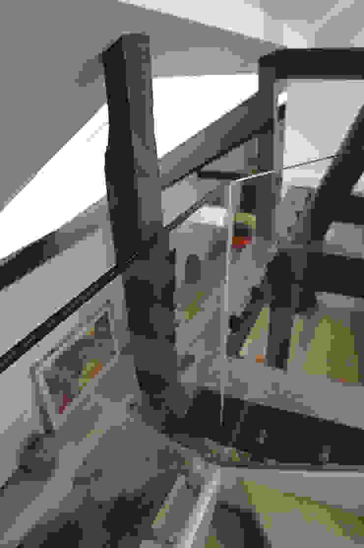 vide: modern  door Studio Blanca, Modern