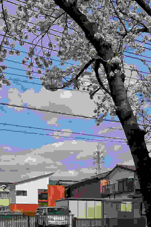 桜並木からの遠景 モダンな 家 の (有)菰田建築設計事務所 モダン