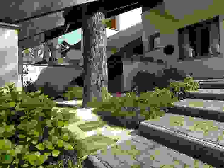 La casa e l'albero STUDIO ZERO 30 Case moderne