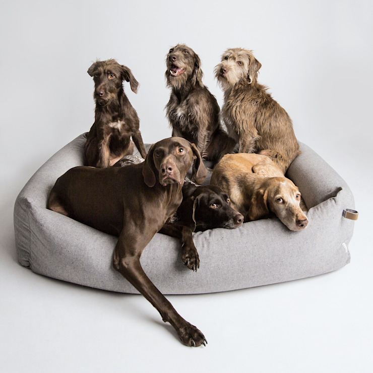 Dog Bed SLEEPY DELUXE (XL):  Wohnzimmer von Cloud 7 Finest Interiors for Dogs & Dog Lovers