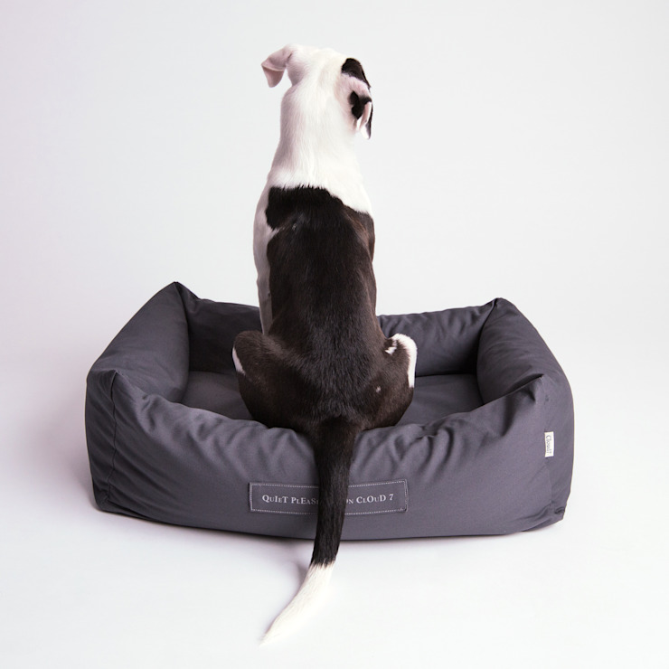 Interior Dog Beds por Cloud 7 Finest Interiors for Dogs & Dog Lovers Moderno