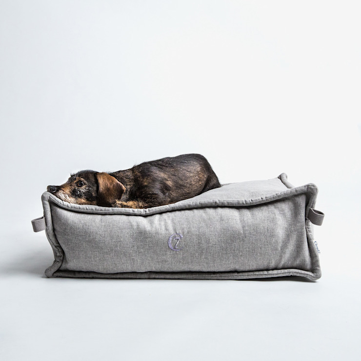 Dog Bed COZY (S): modern  von Cloud 7 Finest Interiors for Dogs & Dog Lovers,Modern