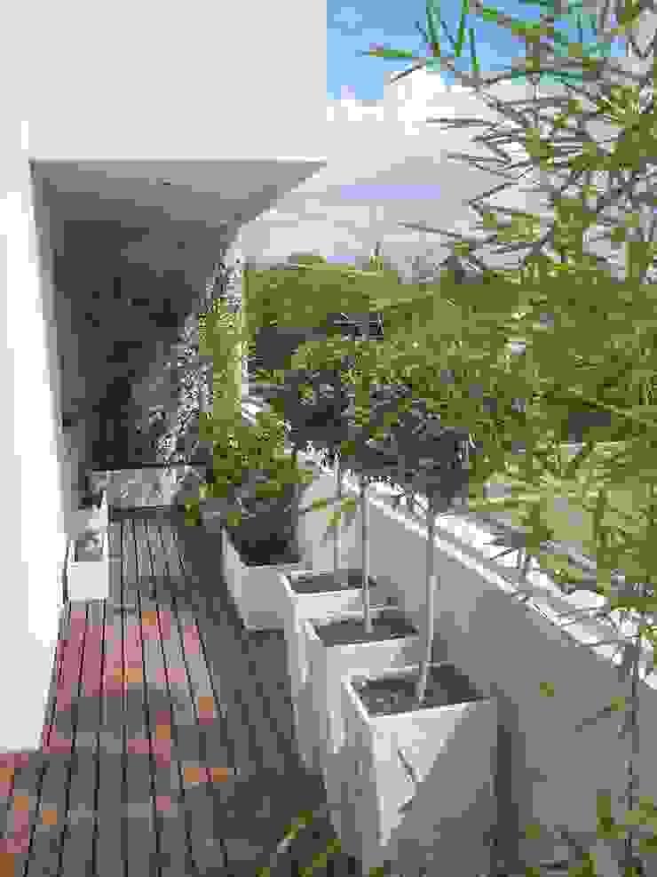 Balcones Aromáticos Balcones y terrazas asiáticos de Estudio Nicolas Pierry: Diseño en Arquitectura de Paisajes & Jardines Asiático