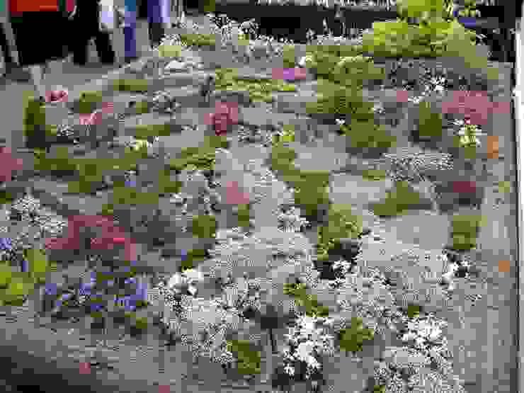 Alpine Garden Jardins clássicos por Ice Alpines Clássico