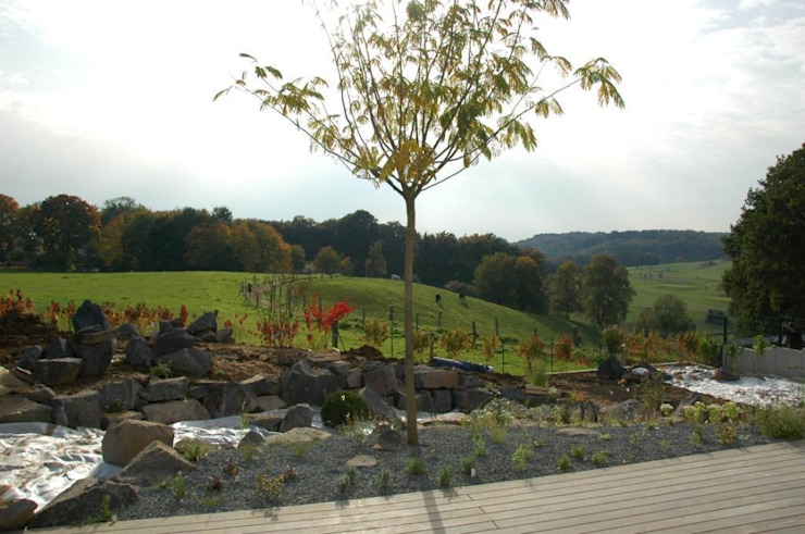 Steingarten Crämer & Wollweber Garten- und Landschaftsbau GmbH Moderner Garten