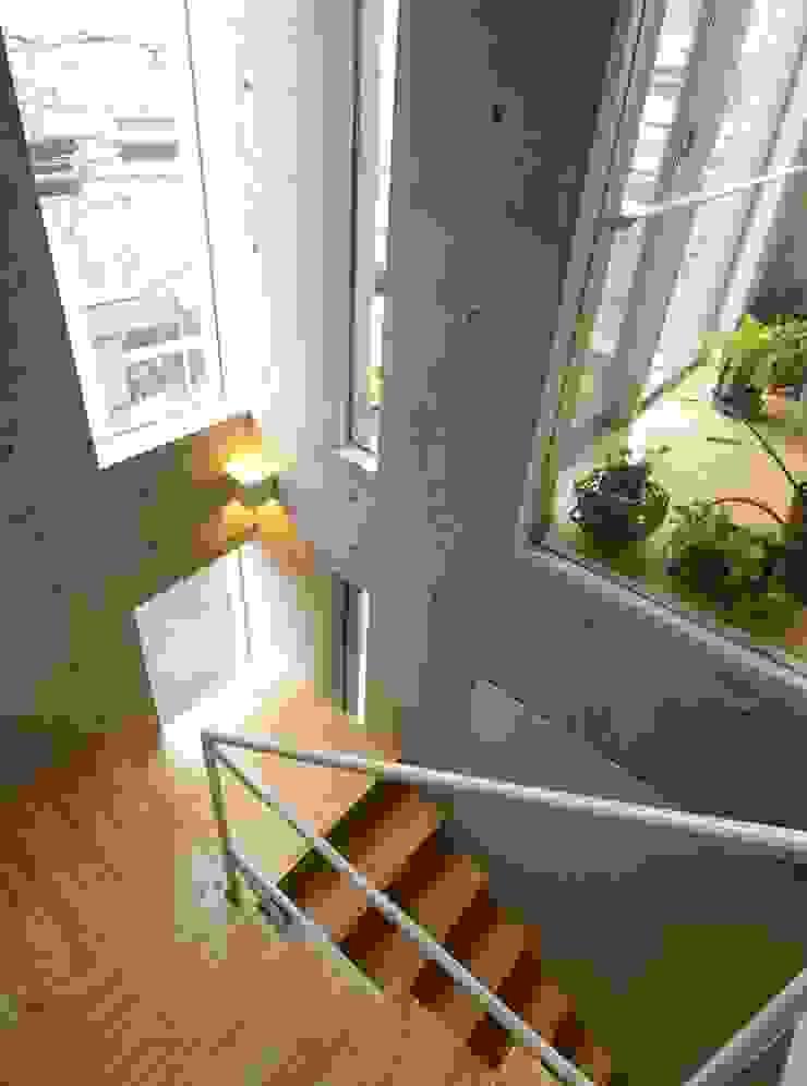 屋上菜園のある家 ARC DESIGN モダンスタイルの 玄関&廊下&階段