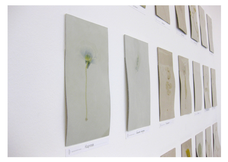 minimalist  by Alegria van der Zande, Minimalist
