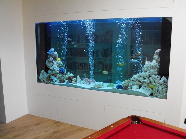 1500 litre bespoke through wall aquarium in a Surrey home Aquarium Services Modern corridor, hallway & stairs