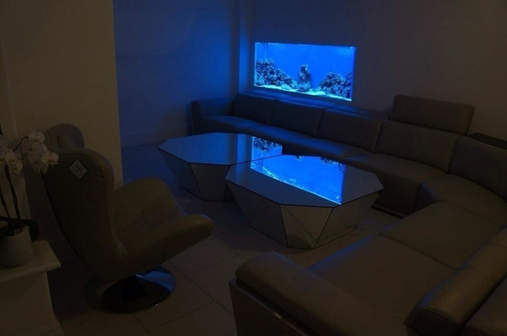 In wall aquarium Aquarium Services Modern living room