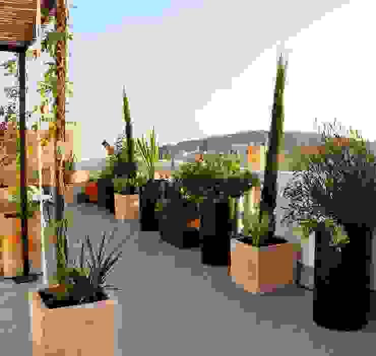 Terraza Balmes Balcones y terrazas de estilo ecléctico de ésverd - jardineria & paisatgisme Ecléctico
