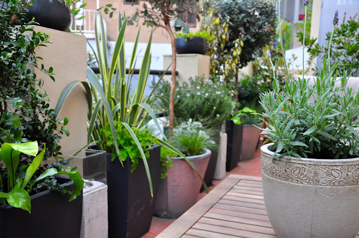 Terraza en el Guinardó. de ésverd - jardineria & paisatgisme Ecléctico