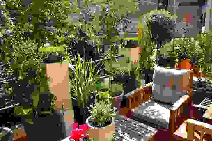 Terraza en el Guinardó. ésverd - jardineria & paisatgisme Balcones y terrazas de estilo ecléctico